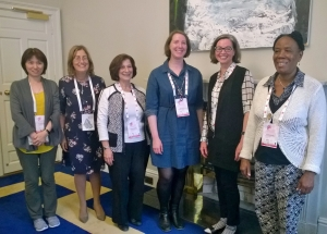 Sister organisations' representatives in Dublin June 2017
